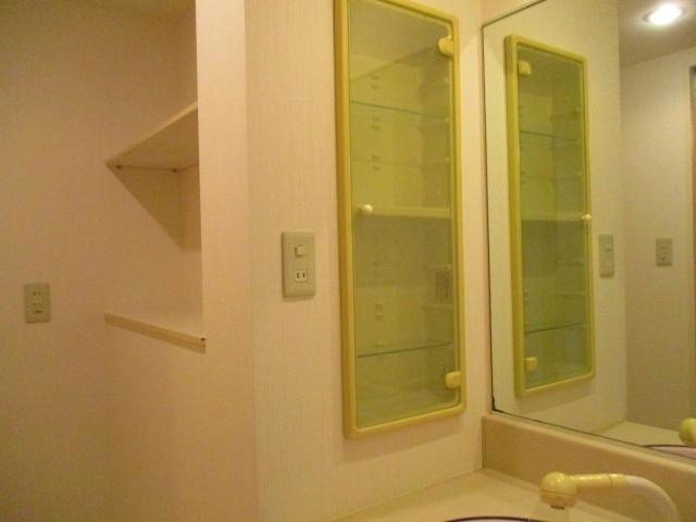 洗面台に棚があります 洗濯機置き場の上部にも棚があります
