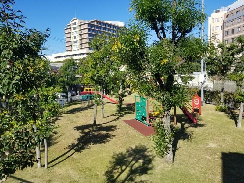 現地の裏は緑豊かな公園です。